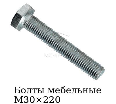 Болты мебельные М30×220 класс прочности 5.8, покрытие цинк