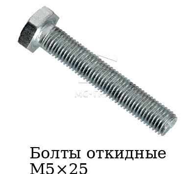 Болты откидные М5×25