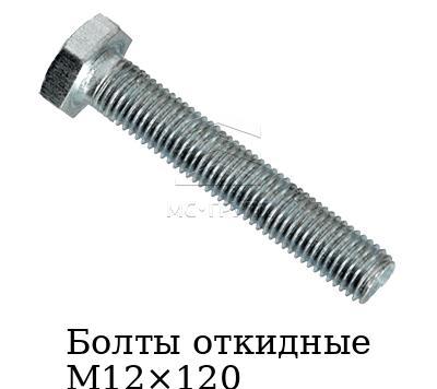 Болты откидные М12×120