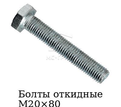 Болты откидные М20×80