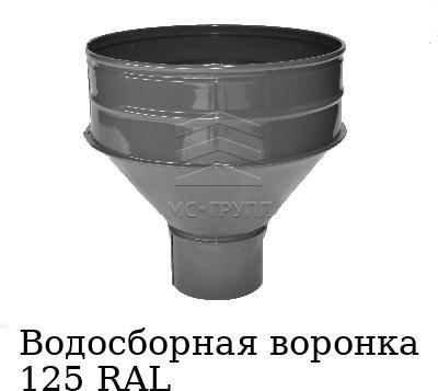 Водосборная воронка 125 RAL