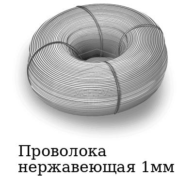 Проволока нержавеющая 1мм, марка AISI 304 (08Х18Н10)
