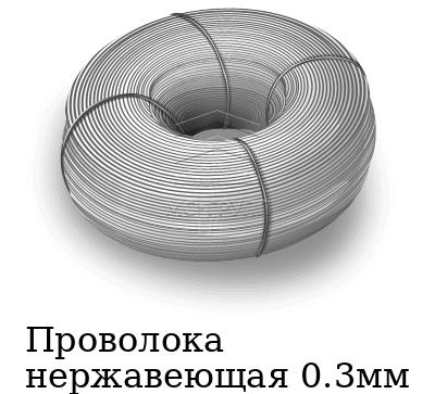 Проволока нержавеющая 0.3мм, марка AISI 321 (12Х18Н10Т)