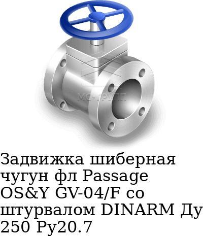 Задвижка шиберная чугун фл Passage OS&Y GV-04/F со штурвалом DINARM Ду 250 Ру20.7