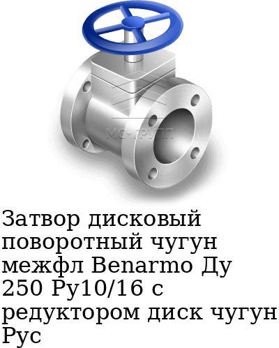 Затвор дисковый поворотный чугун межфл Benarmo Ду 250 Ру10/16 с редуктором диск чугун Рус