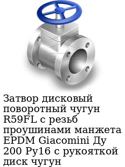 Затвор дисковый поворотный чугун R59FL с резьб проушинами манжета EPDM Giacomini Ду 200 Ру16 с рукояткой диск чугун