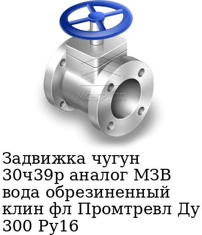 Задвижка чугун 30ч39р аналог МЗВ вода обрезиненный клин фл Промтревл Ду 300 Ру16