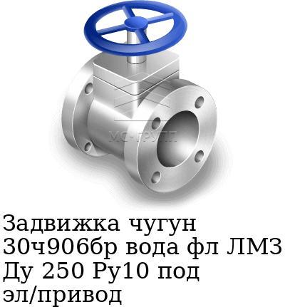 Задвижка чугун 30ч906бр вода фл ЛМЗ Ду 250 Ру10 под эл/привод