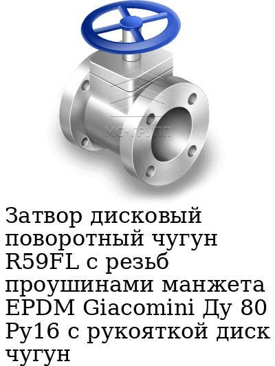 Затвор дисковый поворотный чугун R59FL с резьб проушинами манжета EPDM Giacomini Ду 80 Ру16 с рукояткой диск чугун